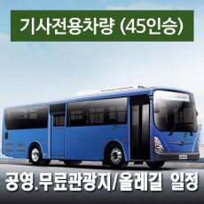45인승차량 + 전용기사 (공영.무료관광지/올레길 일정)